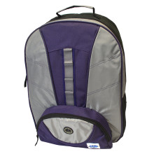 BPG 222 Gray Purple
